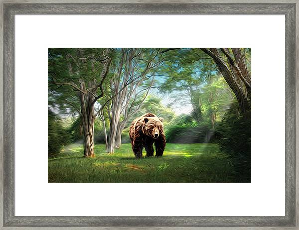 Bear Light Framed Print by Richard Trahan