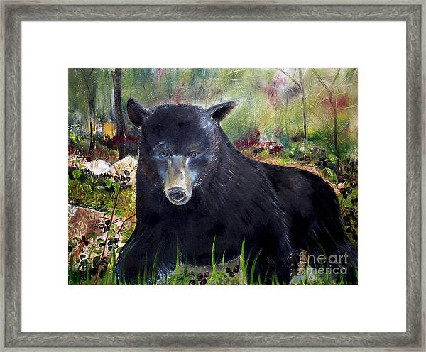 Bear Painting - Blackberry Patch - Wildlife Framed Print