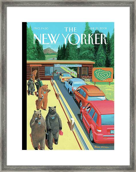 Bears Leaving Work At A National Park Framed Print