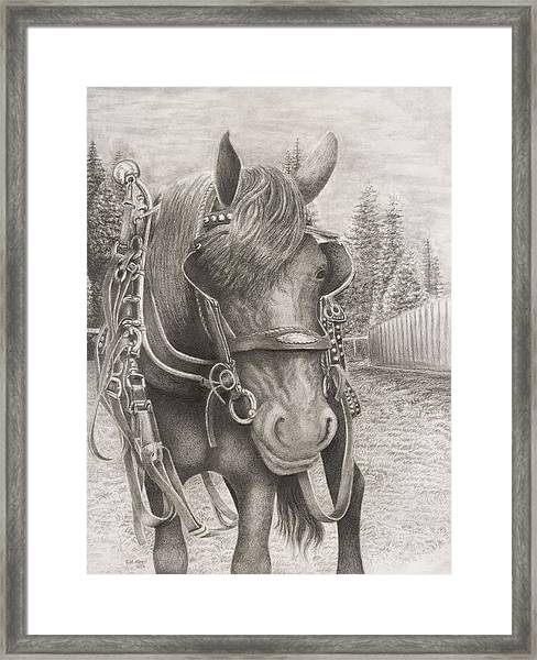 Beast Of Bourbon Framed Print by Rick Moore