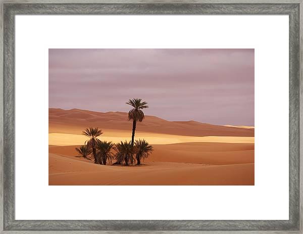 Beautiful Desert Framed Print