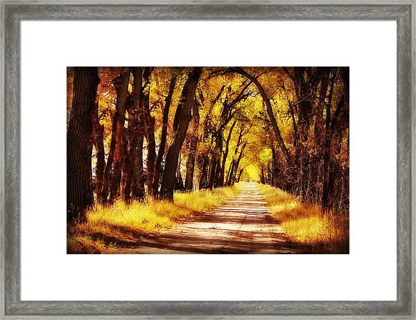 Beautiful Fall Day In Nebraska Framed Print