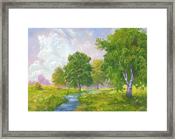 Beautiful Summer Framed Print by Pobytov