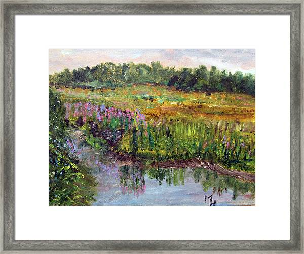 Beauty In The Bog Framed Print