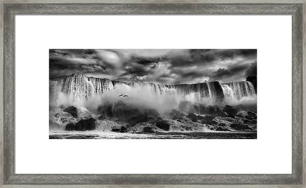 Beauty Unbound !! Framed Print