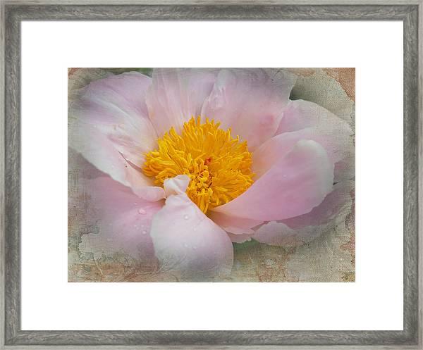 Beauty Woven In Framed Print