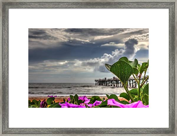 Beautyfulness Framed Print