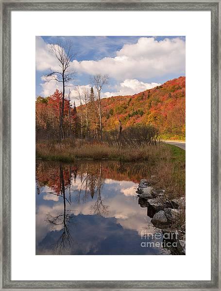 Beaver Pond Symmetry Framed Print