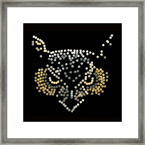 Bedazzled Owl Framed Print