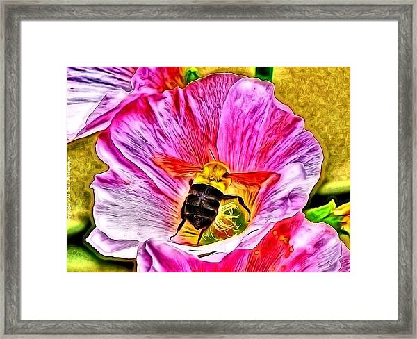 Bee Here In Colour Framed Print by Al Fritz