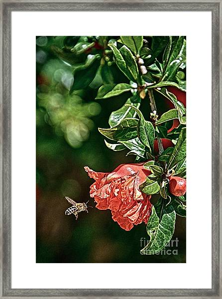 Beeing There Framed Print