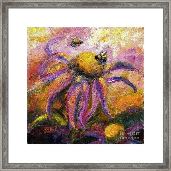 Bees On Purple Coneflower Blossoms Framed Print