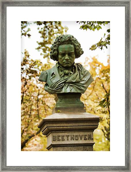 Beethoven In Central Park Framed Print