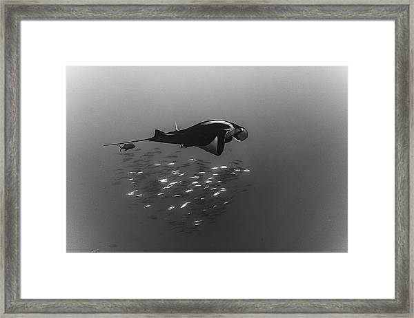 Being One Framed Print