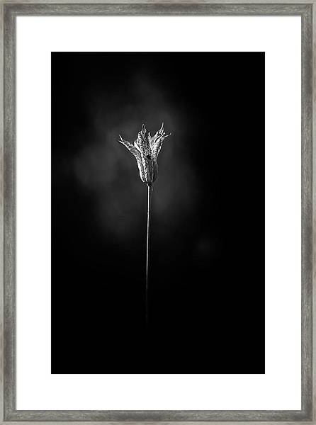 Bell Framed Print by Richard Bland