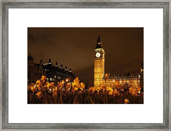 Ben With Flowers Framed Print