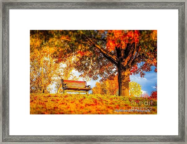 Bench Break Framed Print