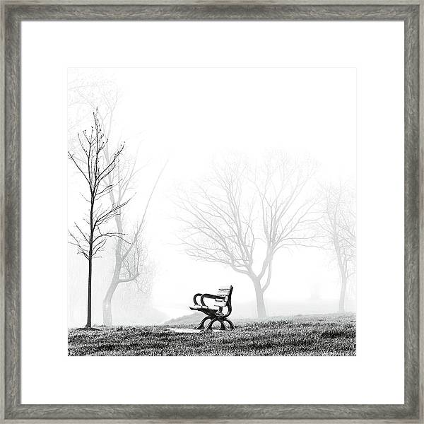 Bench Framed Print