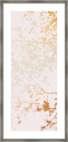 Beneath A Tree 14 4948 Triptych Set 1 Of 3 Framed Print