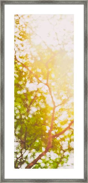 Beneath A Tree  14 5199   Diptych  Set 1 Of 2 Framed Print