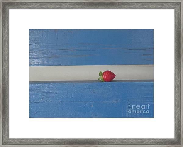 Berry Blues Framed Print