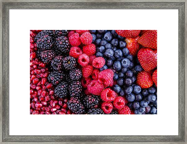 Berry Delicious Framed Print