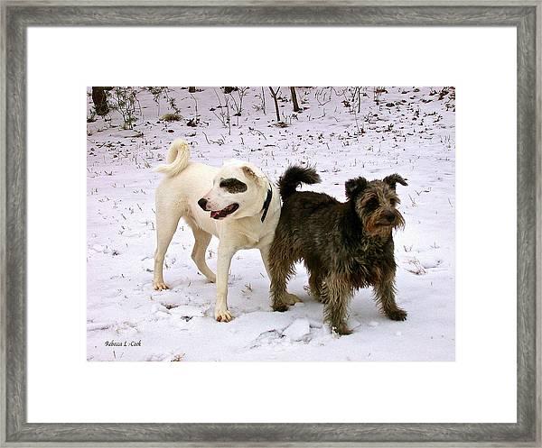 Best Buddies Framed Print