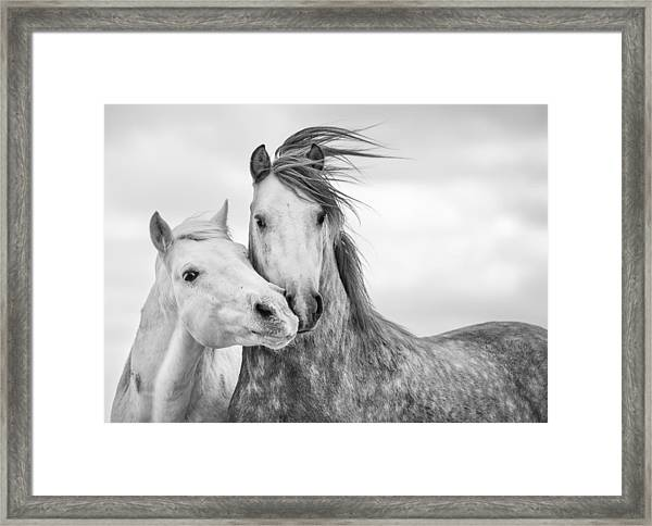 Best Friends I Framed Print