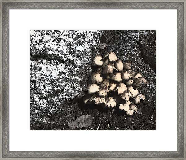 Between The Rocks Framed Print