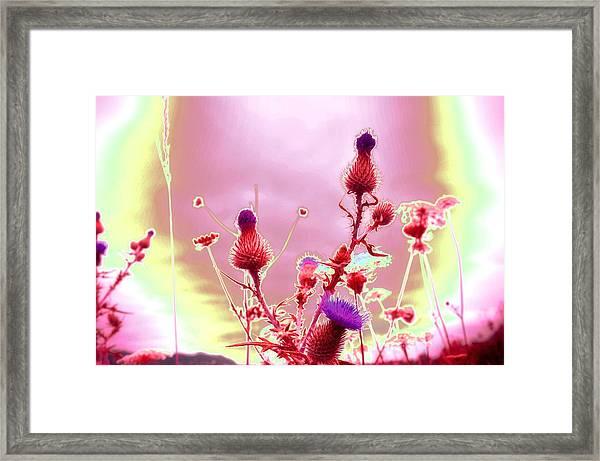 Bewitching Triad Framed Print