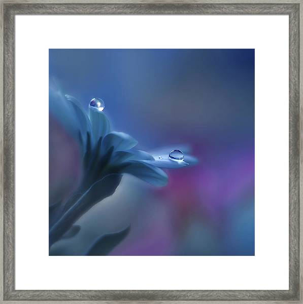 Beyond Mind And Heart... Framed Print