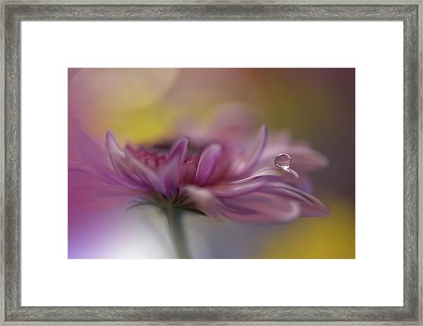 Beyond Words... Framed Print