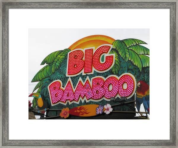 Big Bamboo Framed Print