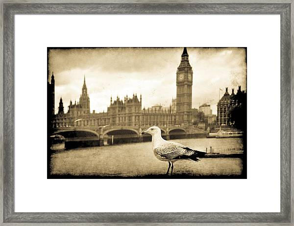 Big Ben And The Seagull Framed Print