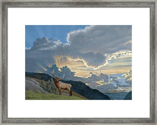 Big Sky-bull Elk Framed Print by Paul Krapf