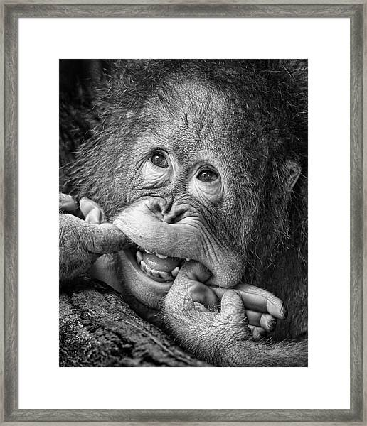 Big Smile.....please Framed Print by Angela Muliani Hartojo