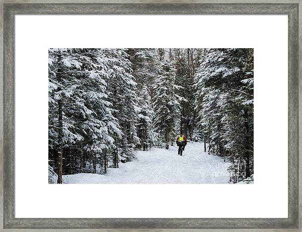 Biking The Wilderness Framed Print