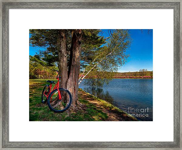 Biking To Horseshoe Lake Framed Print