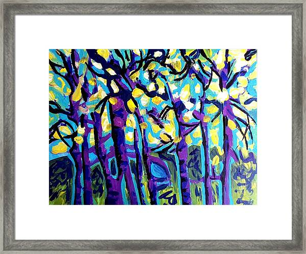 Birch Trees Blue Framed Print