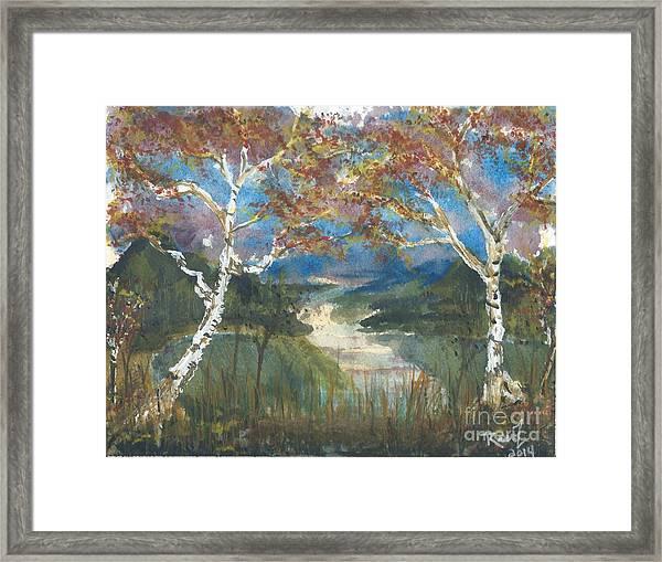 Birch Trees On The Ridge  Framed Print