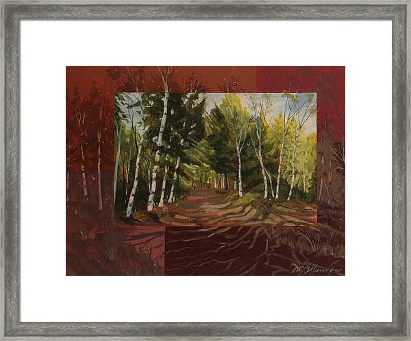 Birches Along The Lane Framed Print
