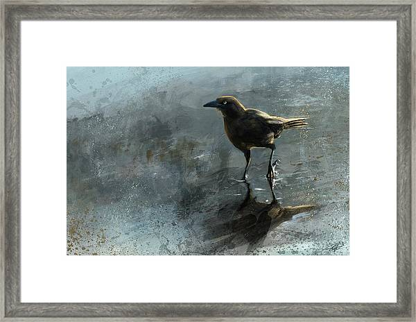 Bird In A Puddle Framed Print