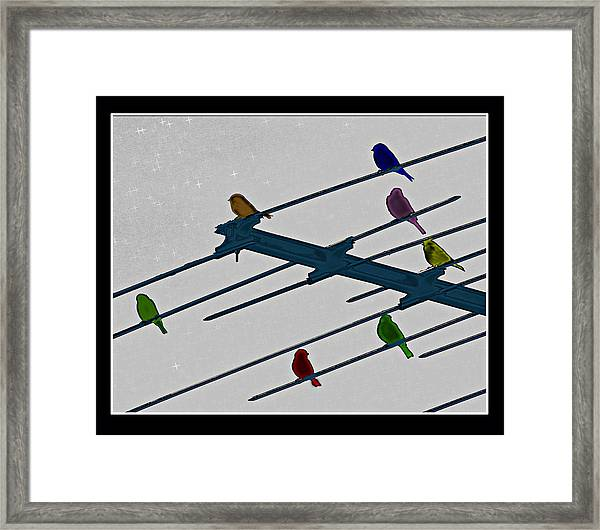 Bird Reception Framed Print