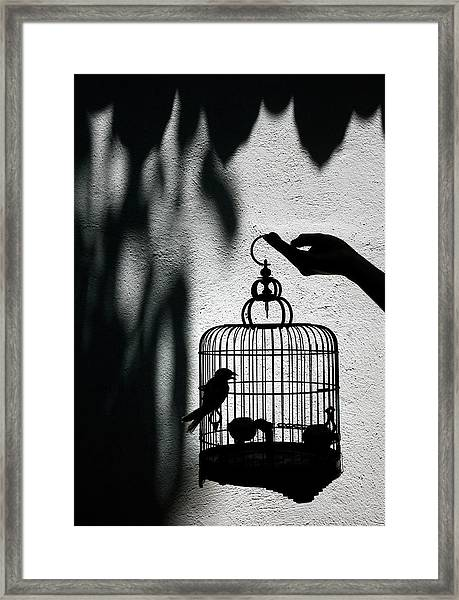 Bird Seller Showing Off One Of The Framed Print