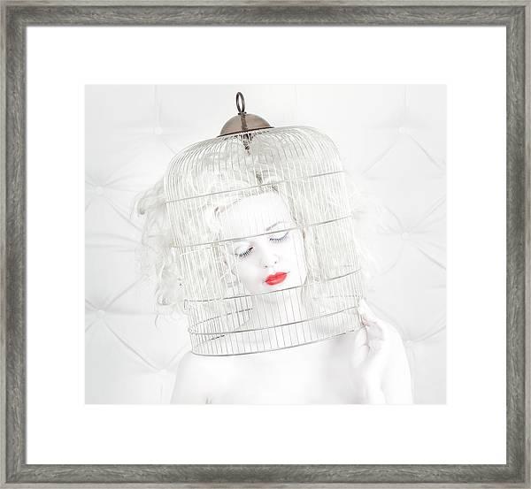 Birdcage Love Framed Print by John Andre Aasen