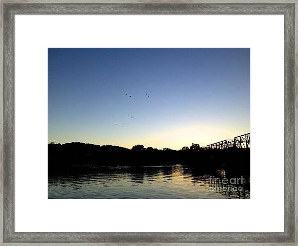Birds And Blues Framed Print