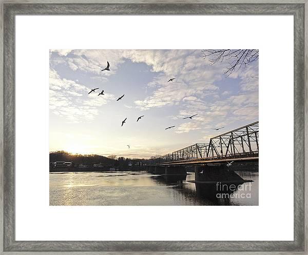Birds And Bridges Framed Print