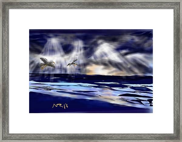 Birds In The Light Framed Print by Nancy Good