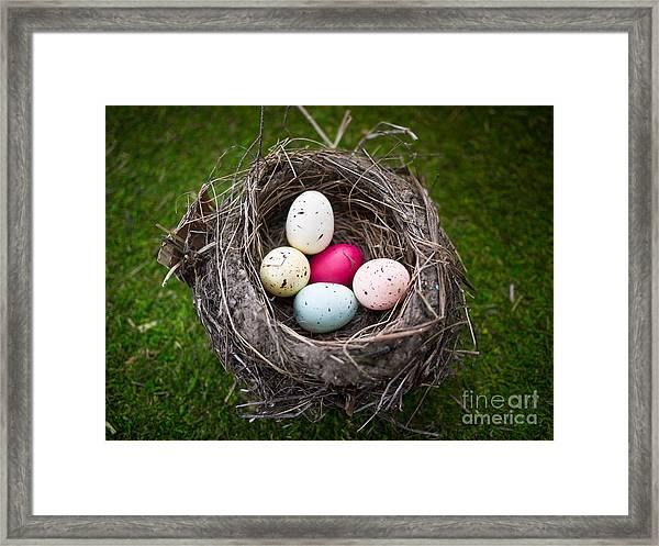 Bird's Nest With Easter Eggs Framed Print