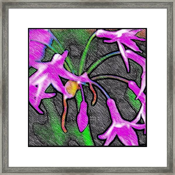 Birds Of A Flower Framed Print